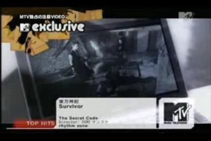 survivor-dbsk